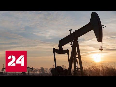 Вырастет спрос на разные источники энергии, уверен Путин