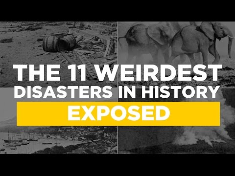 The 11 Weirdest Disasters In History Exposed