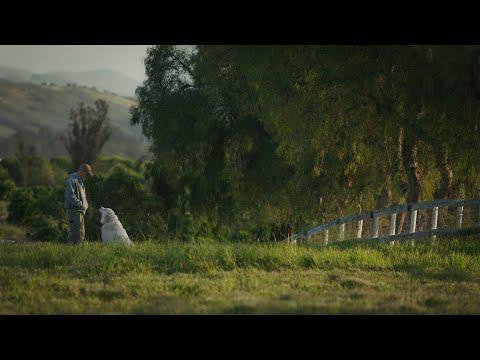 Mi gran pequen?a granja - Trailer espan?ol (HD)