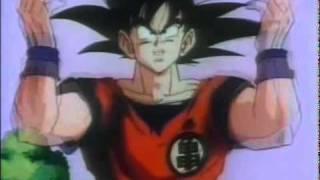 Dragon Ball Z Abertura PT-PT