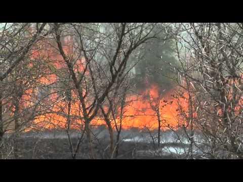 Runaway Wild Bushfire – Londolozi