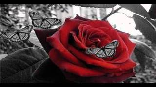 ♫ Nox Arcana - Labyrinth of Dreams.wmv