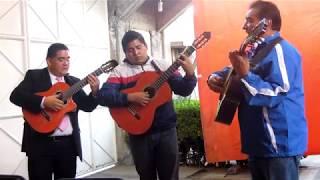 Tardes De Bohemia/Trio - Vanidad Ft. Alfonso Soto