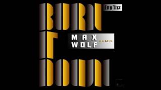 lny Tnz - Burn It Down ( Max Wolf Remix )