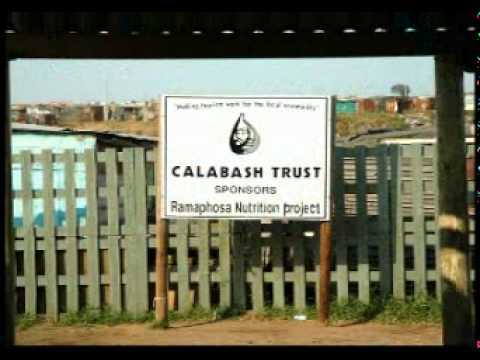 Calabash Tours Port Elizabeth South Africa