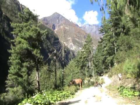 Nepal 2009 dil1