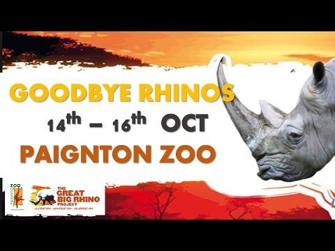 Goodbye Great Big Rhinos Event