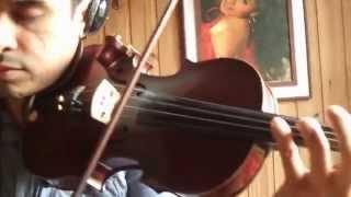 Avicci Wake me Up - Douglas Mendes (Violin Cover)