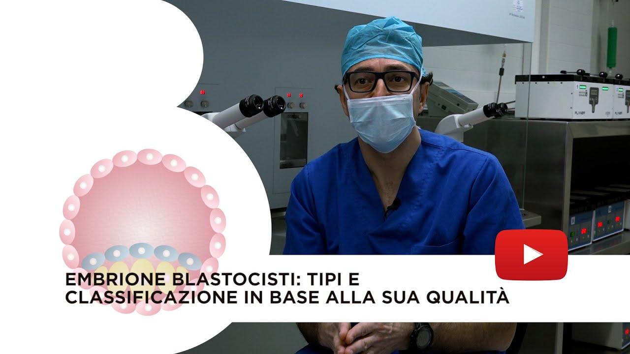 Embrione blastocisti: Cos'è, vantaggi, tipi e classificazione in base alla sua qualità