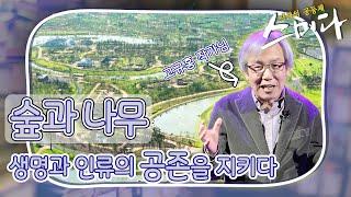 사색의 공동체 '스미다' 66화 다시보기 - 고규홍 작가 다시보기