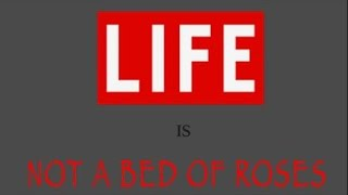 Ricky Flex - Life Is Not A Bed Rose [Rub A Dub Riddim] January 2015