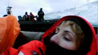 Whale Wars- Stranded at Sea