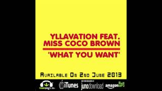 What You Want - Yllavation feat. Miss Coco Brown