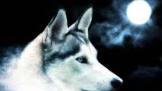 Lobo -Pal Barrio(Malandro Musik)