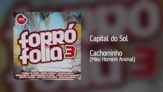 Capital do Sol - Cachorrinho (Meu Homem Animal) [Áudio]