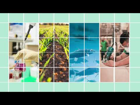 Bio-based innovation for sustainable use of natural resources photo