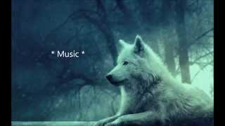 Skylar Grey ft. X Ambassador - Cannonball (Lyrics)