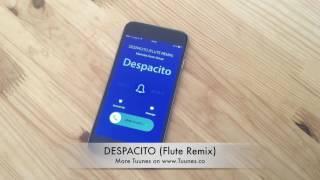 Top DESPACITO Ringtone 2017 - Luis Fonsi feat. Justin Bieber Ringtone Remix Tribute [Download Link]