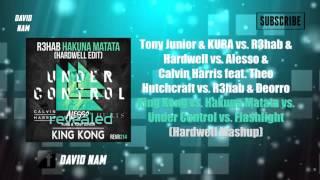 King Kong vs. Hakuna Matata vs. Under Control vs. Flashlight (Hardwell Mashup) [Remake]