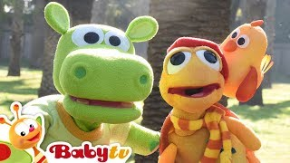 Morning Song with Draco, Oliver, Yum Yum, Bugsy & Friends | BabyTV