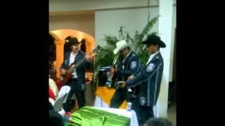Dile Luna - Los Hijos De Barron [En Vivo 2012]