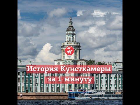 KudaGo Санкт-Петербург: История Кунсткамеры за 1 минуту