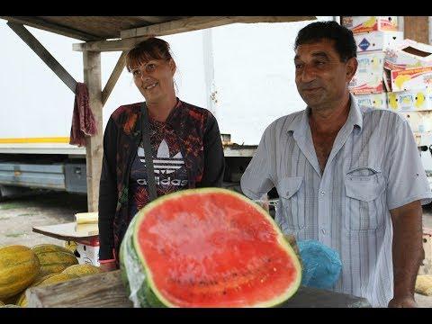 В деня на динята: 80% от плода в София е внос
