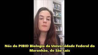 Entrevista com a professora Mariana