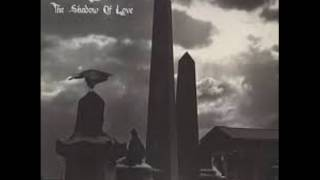 The Damned  - The Shadow Of Love