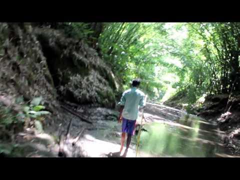 Exploring The Hammam Falls