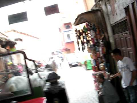 Caleche in Marrakech Morocco