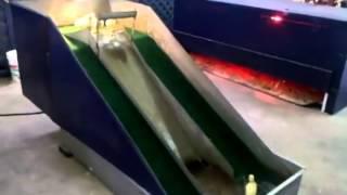 Patinhos fofos se divertem no escorregador