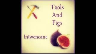 Tools & Figs - Salamusi width=