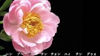 歌ってみた:佳人曲/Beauty Song (Jia Ren Qu) :アカペラ