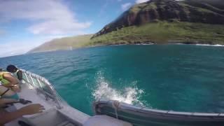 Hawaii Trip December 2016