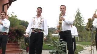 Ionica Ardeleanu - Are tata un baiat