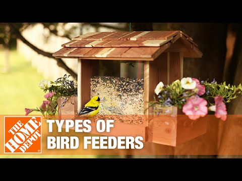 Cardinal sits on a bird feeder stand with three bird feeders.