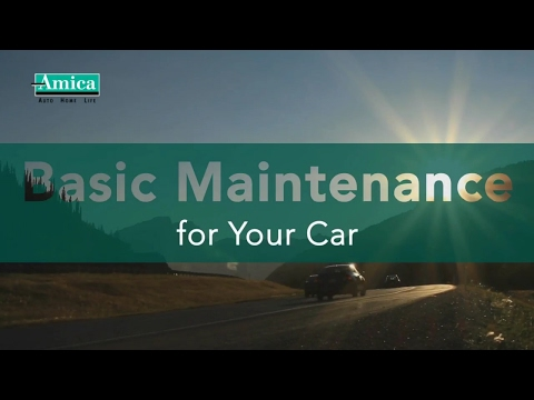 Basic Maintenance for Your Car