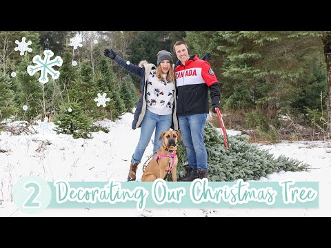 Decorating Our Christmas Tree! | VLOGMAS DAY 2