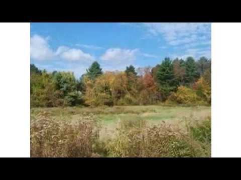 Lot 770 Chestnut Street, Needham, MA - Listed by Lisa Pearlstein, Noah Pearlstein