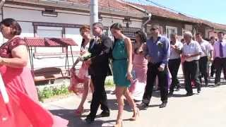 SORIN PEPA   Asta i nunta banatana HD (new 2015)