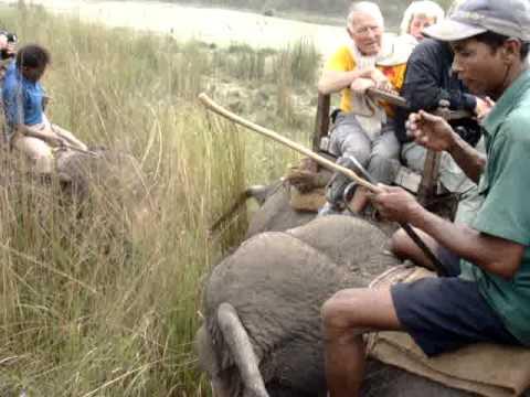 Elefantsafari.MPG