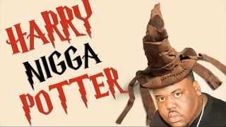 Harry NIGGA Potter