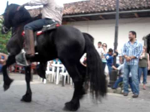 Nicaragua — Granada Hipica Big Dancing Horse