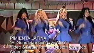 PIMIENTA LATINA  El Guardabosque(Live Mix)