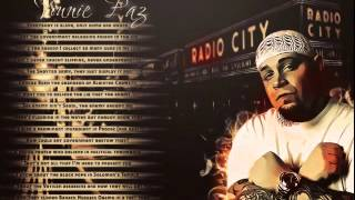 Vinnie Paz - In The Coldness Of A Dream Remix 3 ft Thea Alana