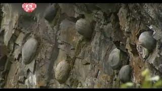 Você sabia disto? Pedras parideiras em Portugal(Arouca) e China