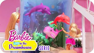 Delfines en la Ventana | Serie | Barbie™ LIVE! in the Dreamhouse