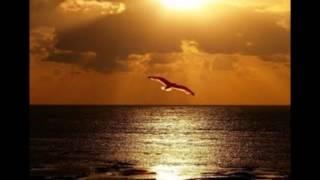 Além do sol, além do mar