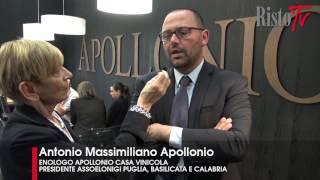 Apollonio - Antonio Massimiliano Apollonio